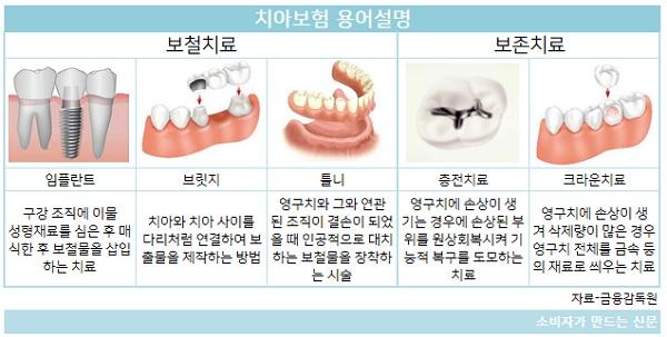치아보험 용어설명.jpg