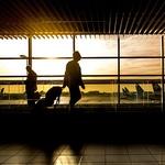 [소비자판례] 반정부 시위로 입국 거절된 패키지 여행...환불은 80%만