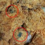 치킨에 검푸른 이물 가득,  곰팡이? 포장 잉크? 변색?