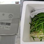 식약처, 잔류물질 검출된 중국산 부추 ‧ 미국산 닭고기 회수