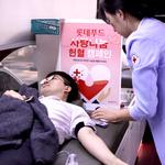 롯데푸드, 사랑 나눔 헌혈행사 진행