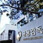 금감원, 사업보고서 점검항목 예고… 부실기재시 감리 대상 선정