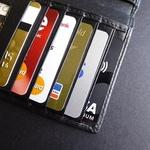 카드론 평균 금리 어디가 높은가?...현대·삼성·우리카드順 , 롯데카드 '최저'