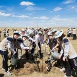 대한항공, 몽골 사막에 나무심기 봉사활동 '14년째'