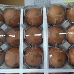 [살충제계란] 전국 23개 농가서 살충제 성분 추가 검출
