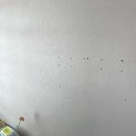 [오마이소비자] 벽걸이TV 설치못해 환불...벽에 뚫린 구멍 어떡하라고?