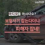 [카드뉴스] 마디모를 아시나요?...보험사기 잡는다더니 피해자 잡네!