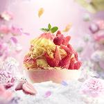 파리바게뜨, 화려한 꽃빙‧1인용 컵빙...맛과 비주얼 업그레이드한 이색 빙수 눈길