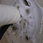 [노컷영상] 에어컨 설치 하자로 실리콘 부위까지 곰팡이 범벅