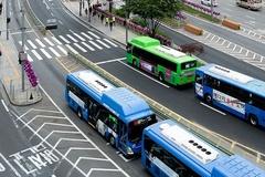 [칼럼] 승객 목숨 담보로 달리는 노선 버스의 '무법행위' 단속하자