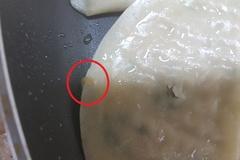 [노컷영상] 유명 대기업 냉동 만두에 구더기...프라이팬에 굽다가 깜짝