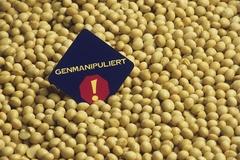 [식탁 위 GMO 숨바꼭질③] 슈퍼마켓 채우는 GMO 가공식품, 정보는 깜깜