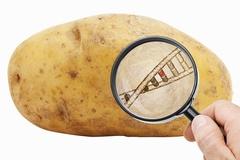 [식탁 위 GMO 숨바꼭질⑤] 대선공약인 '완전표시제' 도입 표류