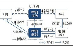 금감원, P2P 대출 취급실태 점검...피해액 1000억원·20개사 수사의뢰
