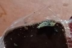 [노컷영상] 초콜릿에 떡하니 붙은 벌레 사체
