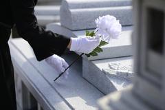 """금감원, '상속인 금융거래 조회서비스' 개선...""""개인연금보험 정보 쉽게 확인"""""""