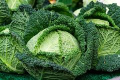 농림축산식품부, 한 달간 배추·무 소비촉진 나선다