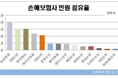[소비자민원평가-손보] '보험금지급'민원최다...중소형사 민원 관리 부실