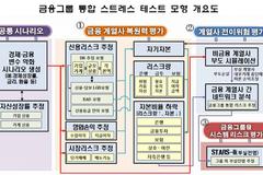 금감원 금융그룹 통합 스트레스 테스트 모형개발...계열사 위험 전이 반영