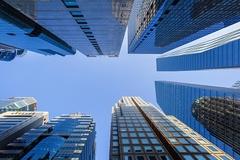 금융투자업계 독립 CCO 선임 '고민중'...방향은 맞지만 비용 어떡해?