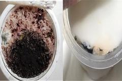냉동피자에 곰팡이 토핑 가득...무더위 곰팡이 식품 주의보