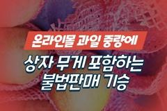 [카드뉴스] 온라인몰서 과일 중량에 상자 무게 포함하는 불법판매 기승