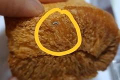 [노컷영상] 대형마트서 구매한 식빵에 쇠수세미 조각 박혀 있어