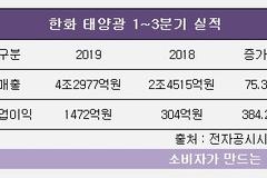 한화 김동관 부사장, 태양광 성과 업고 경영전면 부상