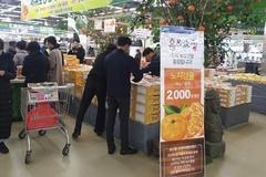 홈앤쇼핑, 농협과 농산물 상생마케팅...하나로마트 전 점포서 '감귤' 할인판매
