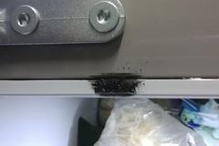 [노컷영상]냉장고 이음새에서 검은 기름 새는데 원인도 몰라